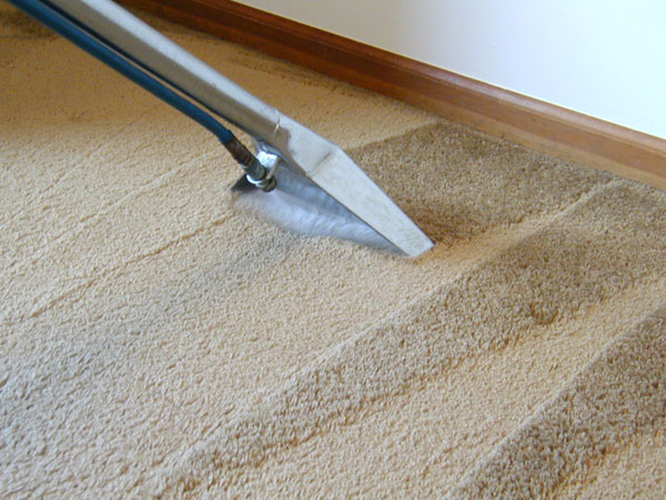 How to clean carpet the right way