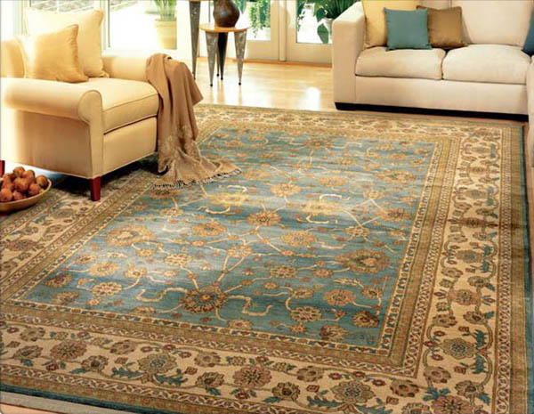 Area Rug Cleaning in Daily Life